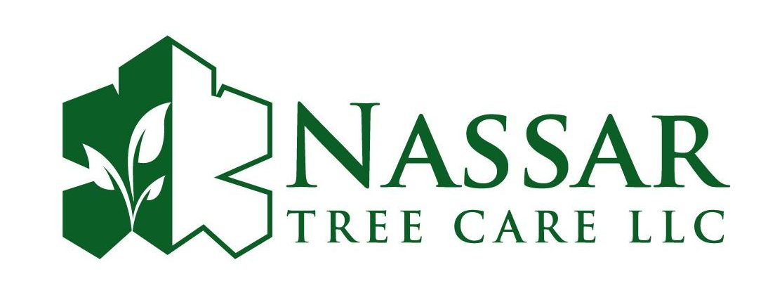 Nassar Tree Care